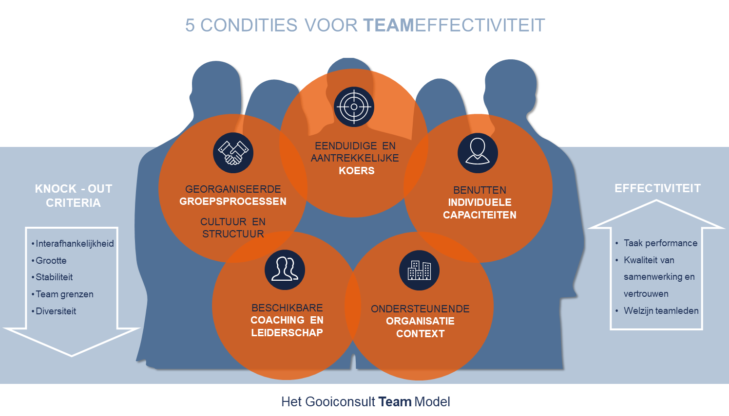 Het Gooiconsult Team Model